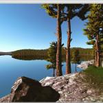 forest_lake_scene_unity_2